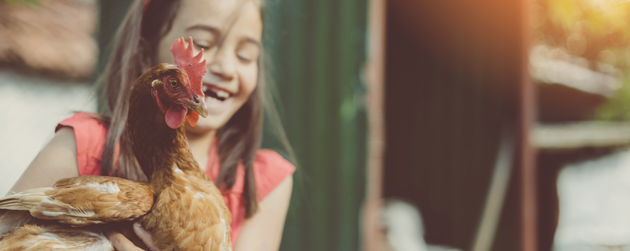 fille et sa poule urbaine