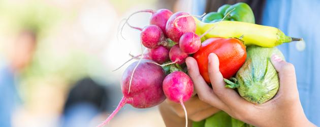 mains rempli de légumes